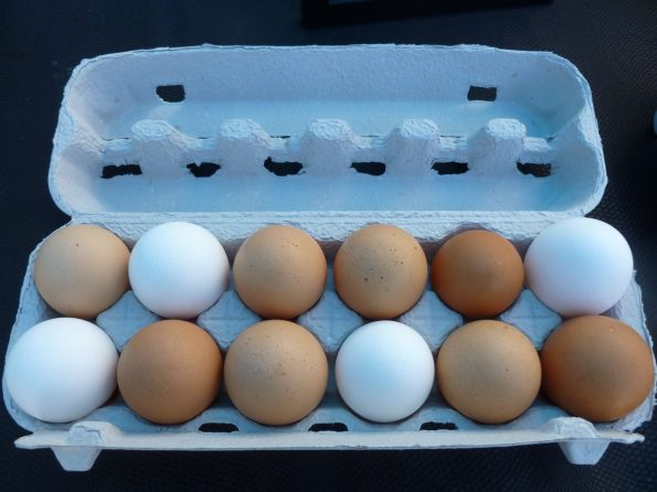 Fresh Eggs Mama Tee's Farm